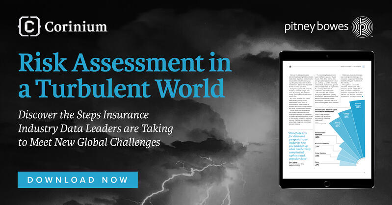 Risk Assessment in a Turbulent World