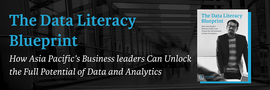 Data Literacy Blueprint banner-1