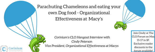 Parachuting Chameleons and eating your own Dog food – Organizational Effectiveness at Macy's
